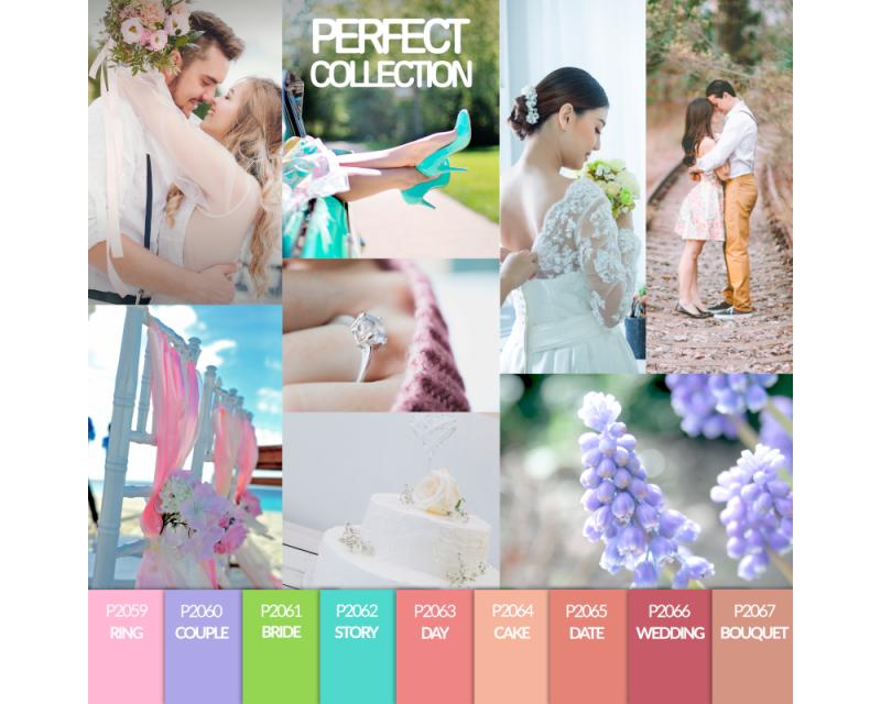 Verniz Gel Perfect Collection 10 ml